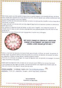 TEXTE SUR LE PRINTEMPS KAPHA 2